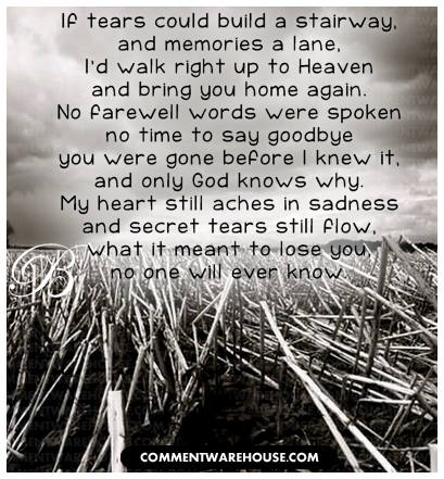 Quotes For Dead Loved Ones Adorable Lost Loved Ones Quotes Remembering  Dobre For